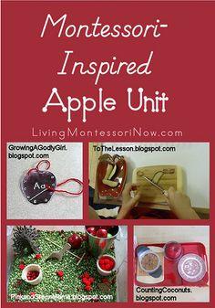 Montessori-Inspired Apple Unit