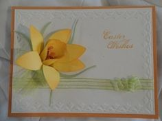 Stampin' Up!  Blossom Petals Punch  Dianna Cartwright  Easter Daffodil