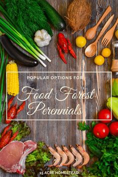Take a look at the many options for food forest perennials you can choose from for your homestead that thrives in almost any climate. Healthy Eating Tips, Healthy Dinner Recipes, Diet Recipes, Healthy Fit, Healthy Nutrition, Eating Habits, Soup Recipes, Chicken Recipes, Clean Eating
