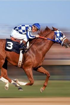 Secretariat and Ron Turcotte. The thing jockeys feared most was seeing the blue-and-white checkered colors of the red colt coming up from behind.