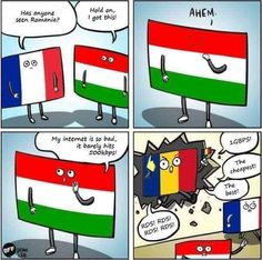 Has anyone seen Romania? Funniest Pictures Ever, Funny Meme Pictures, Funny Animal Memes, Funny Jokes, Hilarious, You Funny, Really Funny, Funny Kids, Funny Cute