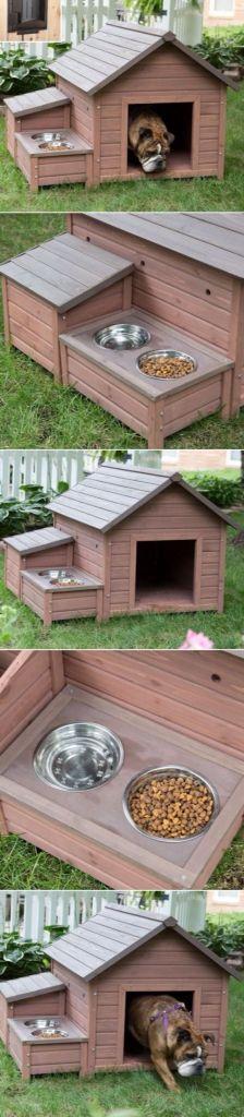 Dog house idea