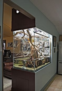Amazing aquarium placement - as room divider - love it
