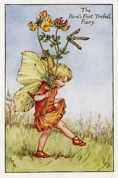 Bird's Foot Trefoil Flower Fairy Vintage Print, c.1927 Cicely Mary Barker Book Plate Illustration