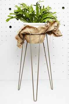 Wire Plant Stand - Available in lots of colours and sizes. Available at Koskela Online.