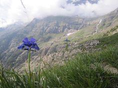 Subida al Balcon de Pineta. Parque Nacional de Ordesa y Monte Perdido. Huesca (Spain) By SaraPer