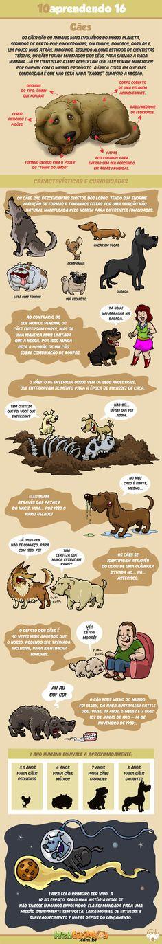 Tirinha sobre tudo que você queria saber sobre cães... ou não
