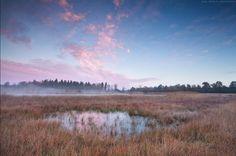 "Autumn sunrise par Olha Rohulya, à Friesland ,Netherlands le 11 Novembre 2013. 11,6x7,7""   Canon EOS 5D Mark II 17mm/ƒ/11/1/1s/ISO 200"