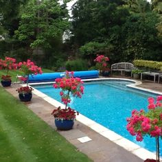 Stay in #London in a house with pool FREE via housesitting, see details by clicking on the above image of the pool you could be swimming in soon!