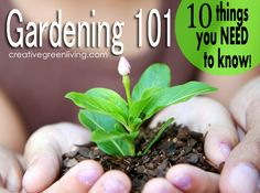 Good stuff to know if you're a beginning gardener or planning to start a garden this year.