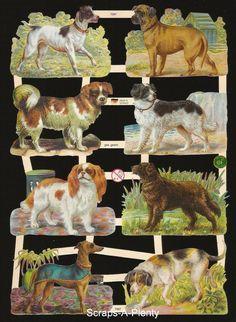 German Victorian Style Embossed Scrap Die Cut - Wonderful Dogs  NICE    EF7397