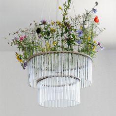 Wandelbare Reagenzglas-Kronleuchter, Pani Jurek