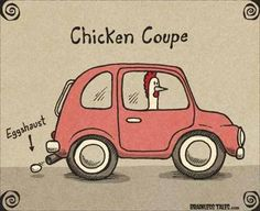 ....... Chicken Quotes, Chicken Humor, Chicken Coops, Chicken Signs, Funny Chicken, Backyard Poultry, Chickens Backyard, Funny Cartoons, Funny Memes