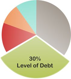 The Five Important Factors That Affect Your Credit Score: Your Level of Debt Affects Your Credit Score