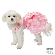 'Cause every girl needs her maid! #MarthaStewartPets Bridemaid Dress only @petsmartcorp | #petwedding #dogdress