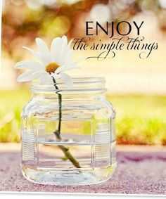 Enjoy the simple things in life and my daisy!!
