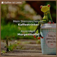 Mein Sternzeichen ist:  #Kaffeetrinker    Aszendent:  #Morgenmuffel