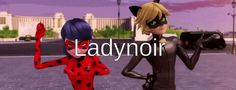 Laynoir
