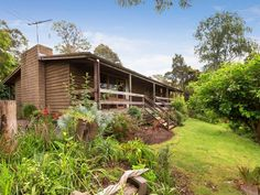 19 Beauford Road Red Hill South VIC 3937 | House for sale | domain.com.au Earth Homes, Ocean, Cabin, House Styles, Plants, Cabins, The Ocean, Cottage, Plant