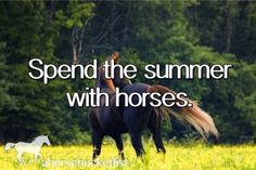 I do this every summer,Vella I don't spend the whole summer with horses, but I spend some of it with them