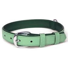 Try out our new dog collor in new colour & shades.available at us.  For more details click on the below link or call us on +9833884973/9323558399  http://tapeswebbingstraps.in/  Courtsey : Tapes Webbing straps