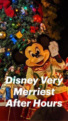 Walt Disney World Vacations, Disney Resorts, Disney World With Toddlers, Fireworks Show, Disney World Planning, Disney World Tips And Tricks, Christmas Treats, Merry, Holiday