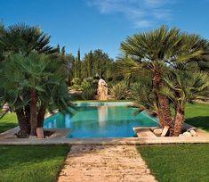 Piscina con palmeras y camino de piedra