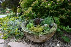 Plant succulents in their own cement container for a garden-within-a-garden.