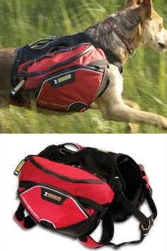 dog-packs-for-hiking-ruff-wear-palisades-pack.jpg