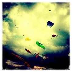 Dreaming kites.....