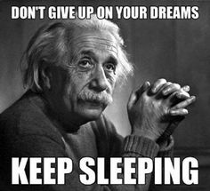 11 Best Chase Your Dreams Memes Images Chase Your Dreams Dreaming