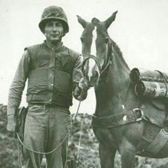 Horse of War | From George Washington's beloved sorrel to a little mare who braved the front lines of the Korean War, here are five unsung equine heroes.