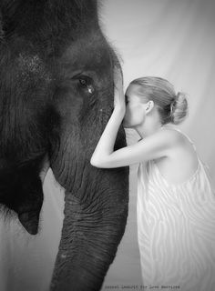 behind the scenes w. Lemholt N' Bergman for Love Warriors - Warriors of the World project © Hannah Lemholt Photography Photo Elephant, Love Warriors, Elephants Photos, Black White Art, Animal Totems, Laura Lee, Black And White Photography, Beautiful Creatures, Pet Birds