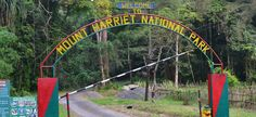 Named after the third highest point in Andaman and Nicobar Islands, Mount Harriet… the Mount Harriet National Park is known for its Andaman wild pigs, saltwater crocodiles, turtles, Tytler's leaf warbler and robber crab. The park covers an area of approximately 47 square kilometers which is covered with a dense tropical moist montane forest.