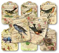 victorian birds on music notes sheet scalloped scrapbooking tags