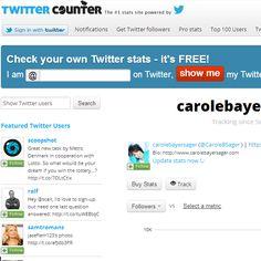 TwiiterCounter é um sistema gratuito de análise de monitoramento no twitter.    Acesse: http://twittercounter.com/