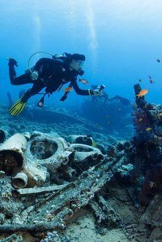 Nurek płynie nad pozostałościami po ładunku statku Yolanda, który transportował artykuły sanitarne i zatonął w latach 70 niedaleko Sharm El Shaikh. http://www.tvn24.pl/zdjecia/zdjecie-dnia,46897,lista.html
