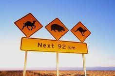 Une signalisation que vous ne trouverez qu'en Australie !  http://www.voyage-langue.com/resultats/sejours-linguistiques-australie-39