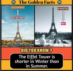 Wierd Facts, Wow Facts, Intresting Facts, Real Facts, Wtf Fun Facts, Interesting Science Facts, Interesting Facts About World, Some Amazing Facts, Unbelievable Facts