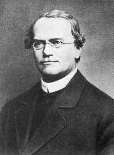 Gregor Mendel quotes quotations and aphorisms from OpenQuotes #quotes #quotations #aphorisms #openquotes #citation