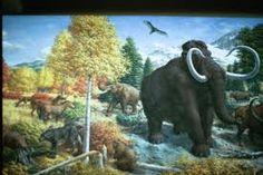 「Pleistocene」plάɪstəsìːn 洪積世 約258万年前から約1万年前までの期間