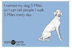 I named my dog 5 Miles so I can tell people I walk 5 Miles every day.