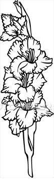 gladiola flower gladiola tattoo tattoos flowers flower tattoo august ...
