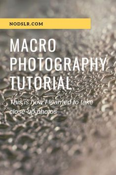 Macro photography has become a favorite hobby of m. Macro photography has become a favorite hobby of mine. These tips and tricks shows what I have learned in my quest to take the best macro photography photos I can.