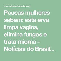 Poucas mulheres sabem: esta erva limpa vagina, elimina fungos e trata mioma - Notícias do BrasilNotícias do Brasil