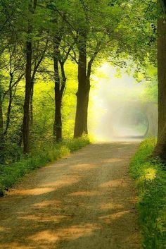 ideas for photography nature green pathways Beautiful World, Beautiful Places, Beautiful Pictures, Beautiful Flowers, Beautiful Roads, Peaceful Places, Beautiful Beautiful, Back Road, Pathways