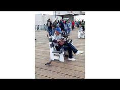 """Encantador de palomas """"Santa Monica Beach""""/Enjoyed pigeon """"Santa Monica ..."""