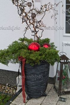 House entrance with Christmas decoration- 527029 – Hauseingang mit Weihnachtsdekoration 527029 – House entrance with Christmas decoration - Christmas Planters, Outdoor Christmas, Christmas Time, Christmas Crafts, Merry Christmas, Christmas Decorations, Xmas, Holiday, Decoration Bedroom