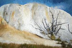 Orange Mound Hot Spring, Yellowstone National Park. This Fine Art Print will make an exceptional statement where ever it is displayed