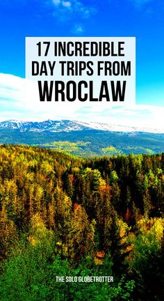 Day trips from Wroclaw | Wroclaw day trips | Wroclaw travel | Wroclaw things to do | Places to visit around Wroclaw | Wroclaw Poland | Auschwitz | Poznan | Castles in Poland | Best destinations around Wroclaw | Best day trips from Wroclaw | How to plan day trips from Wroclaw | Best Wroclaw day tours to go | Wroclaw tips | Poland travel
